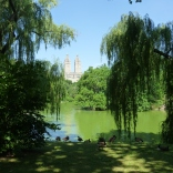 New York, Central Park, July 2014